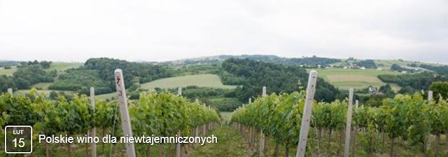 http://powinowacicogdziekiedy.blogspot.com/2017/01/15022017-polskie-wino-dla.html
