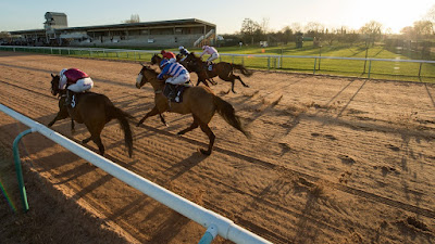 Southwell racing tips