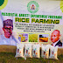 Presidential amnesty beneficiaries produce and distribute 1500 bags of rice