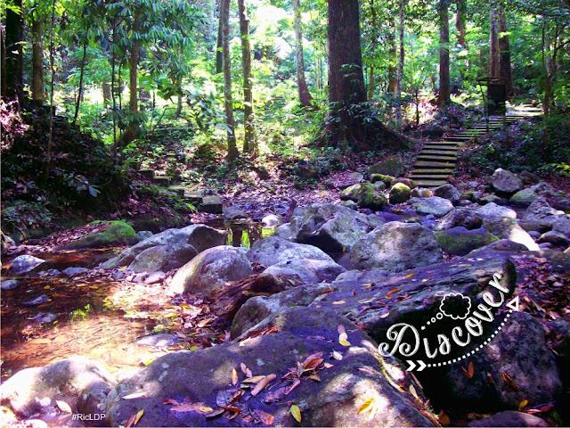 Discover Makiling Botanic Garden