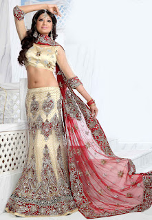 Perfect-Indian-mermaid-or-fish-cut-lehenga-designs-choli-fashion-3