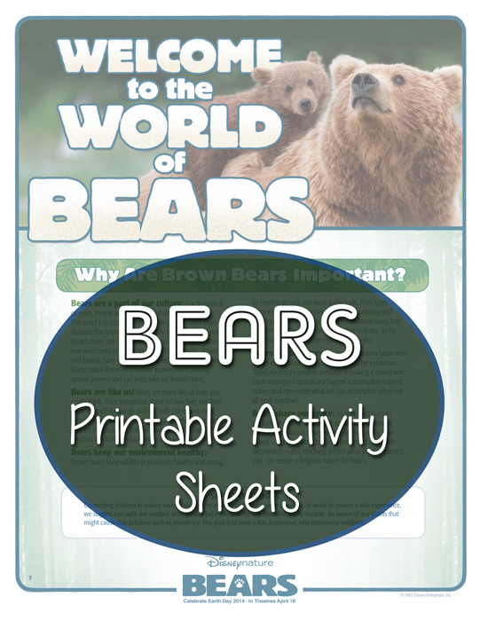 FREE Printable BEARS Activity Sheets