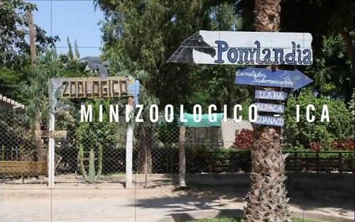 Mini Zoológico Municipal de Ica
