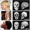 アジア人、白人、黒人の骨格の違いが凄すぎる件