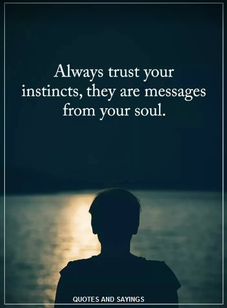 Always Trust Your Instincts Quotes And Sayings