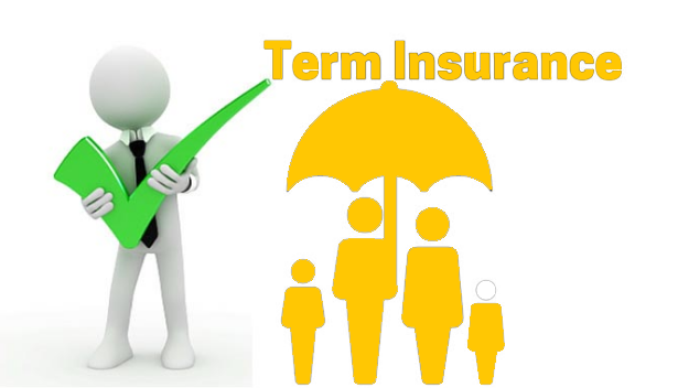 Best Term Life Insurance Policies