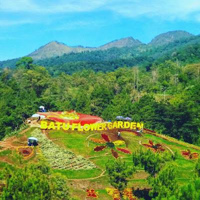 bukit bulu batu flower garden