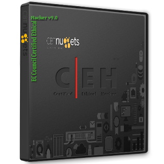 CBT Nuggets - EC Council Certified Ethical Hacker v9.0