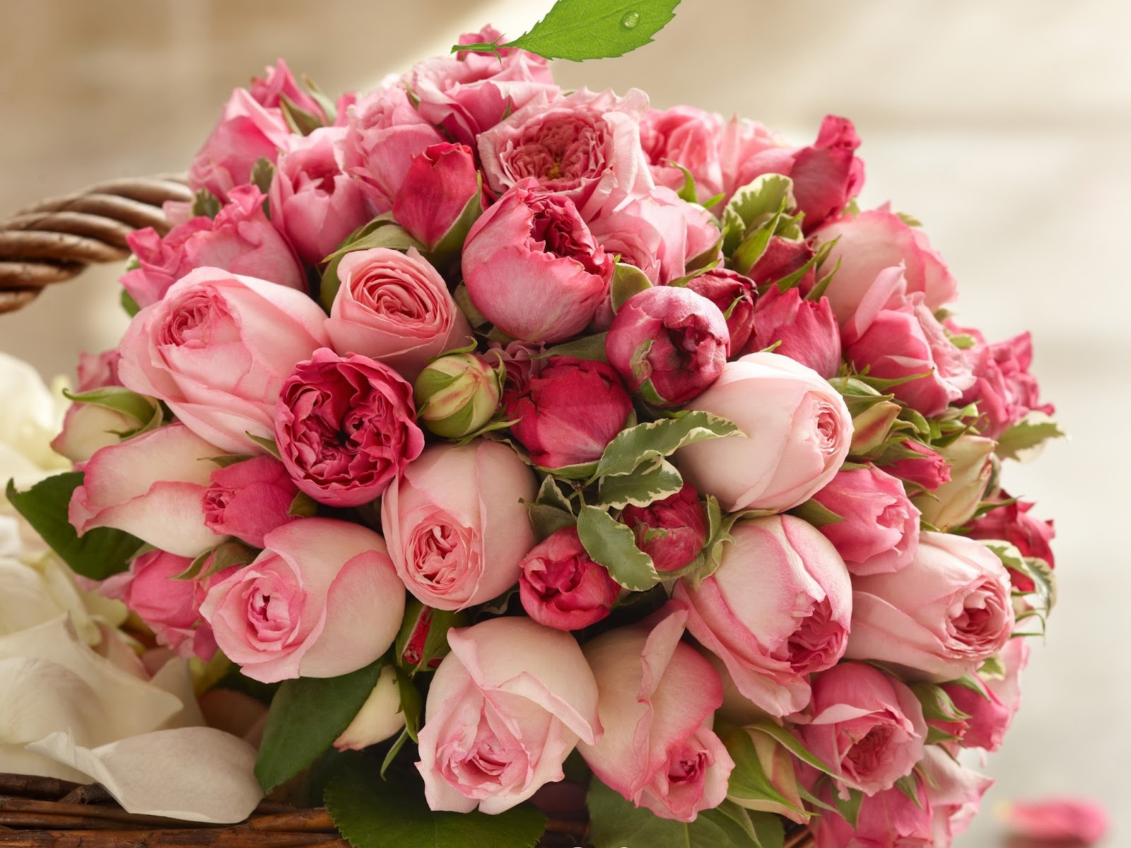 Myflowers2india we send flowers to india send flowers to delhi online flower delivery in delhi izmirmasajfo