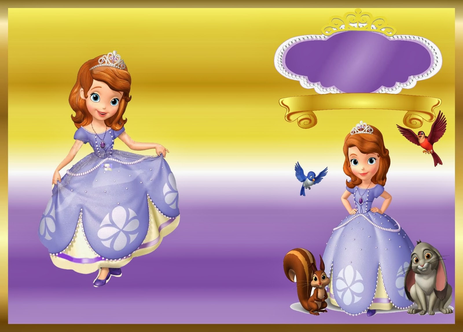 Sofia The First Party Decorations Ideas