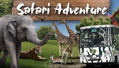 Tempat wisata taman safari di bogor