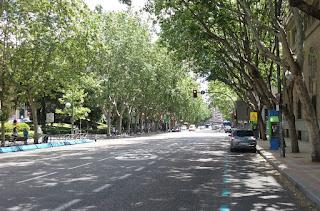 La ancha y señorial calle, en su tramo cercano a la plaza de España está flanqueada por grandes árboles.