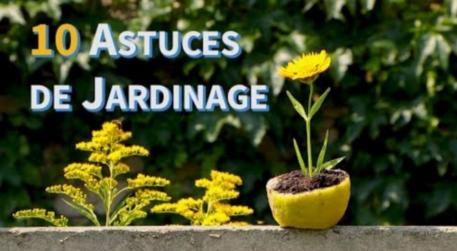 Astuces jardinage ! 10 DIY life hacks pour votre jardin