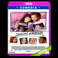 Amor y disfunción (2018) WEB-DL 1080p Audio Dual Latino-Ingles