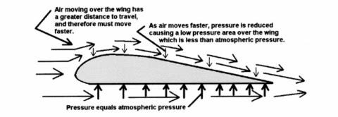 The physics of airplane flight essay
