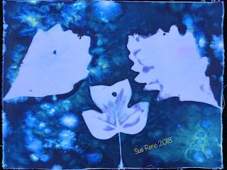 Wet cyanotype_Sue Reno_Image 464