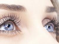Nutrisi Terbaik Untuk Kesehatan Mata