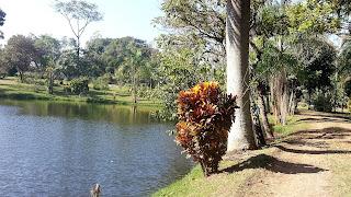 lago no Parque Municipal Santa Rita Passa Quatro