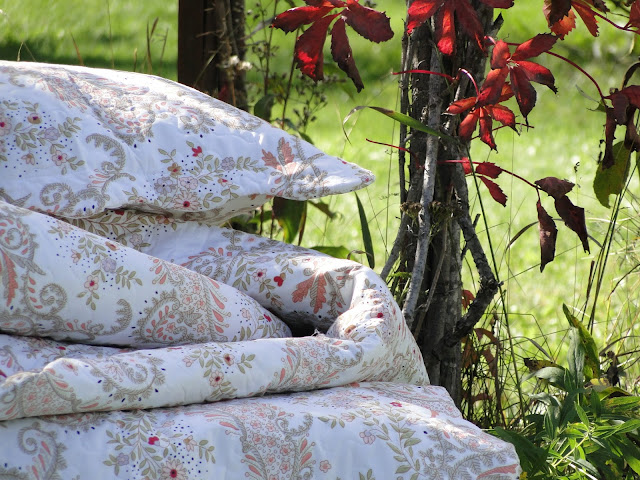 Microfibre quilt set with 2 shams in Queen at The Camellia.