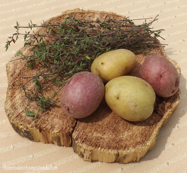 New Potatoes and Thyme - Home Sweet Homestead