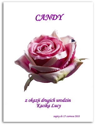 Candy z okazji urodzin Kącika Lucy
