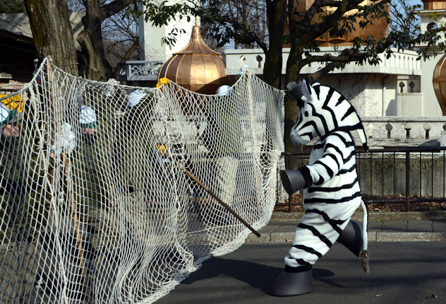 Emergency drill at Tokyo's Ueno Zoo, 2016. Zoo employee dressed up as a plush zebra approached by a line of zoo employees with a portable containment net. The Zoo Houdinis and other stories. marchmatron.com