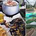 Menikmati Ikan Bakar di Kawasan Jembatan Ciminyak, Rancapanggung, Cililin