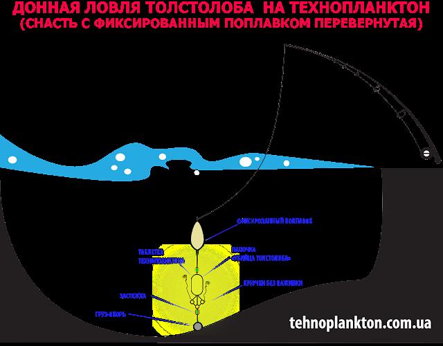 рецепты технопланктона и ловля толстолобика