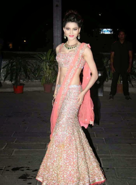 Urvashi Rautela in Pink Saree