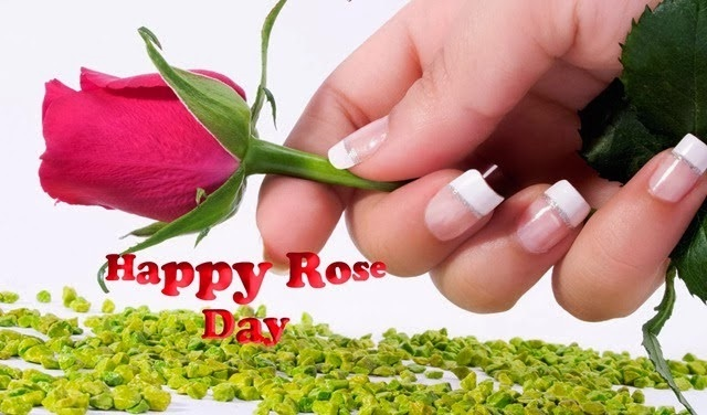 Happy Rose Day 2018 quotes