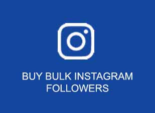 buy instagram followers wholesale india