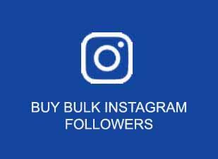 buy instagram followers wholesale india