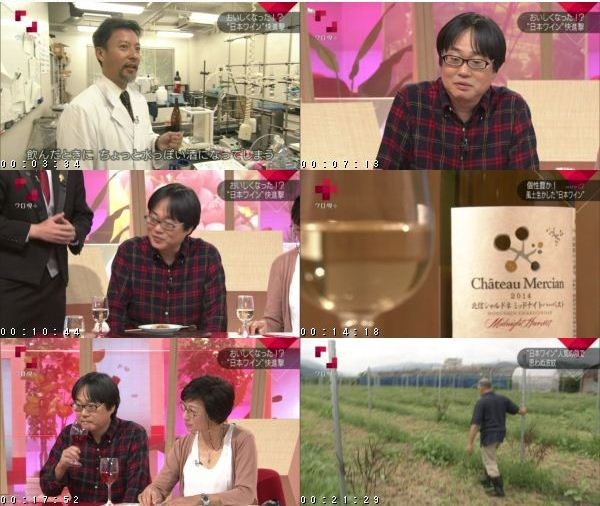 "[TV-Variety] クローズアップ現代+「なぜおいしくなった?""日本ワイン""快進撃!」 – 2016.10.17"