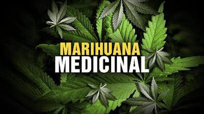 Usos Cannabis Medicinal