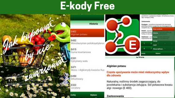 E-kody Free - 8 aplikacji na telefon, które ułatwią Ci zakupy