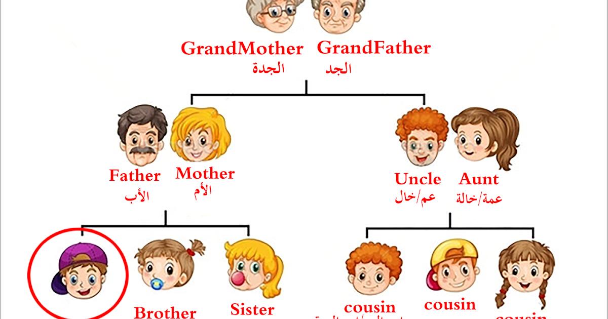 أسماء أفراد العائلة بالانجليزي والعربى بالصور فى شجرة العائلة