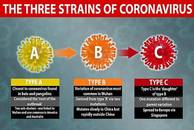 Varian virus corona