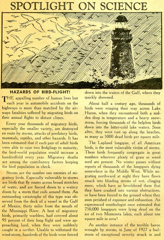 Strange Adventures (1950) issue 81 - Page 25