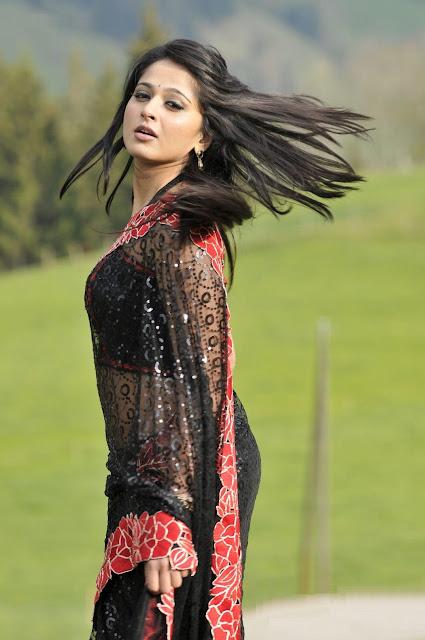 Cute Anushka shetty gouseous stylish sharee photo