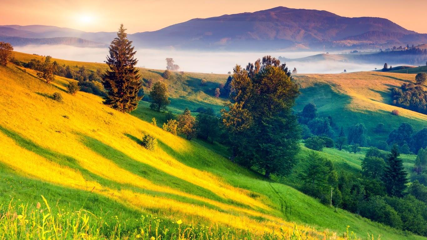 Meilleurs fonds d 39 crans paysages et fleurs fond ecran pc for Foto de fond ecran