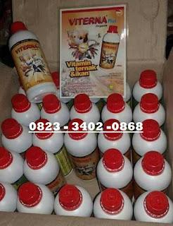 Jual Viterna Plus Nasa Di JAMBI NGANJUK 082334020868