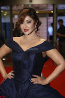 Payal Ghosh aka Harika in Dark Blue Deep Neck Sleeveless Gown at 64th Jio Filmfare Awards South 2017 ~  Exclusive 094.JPG