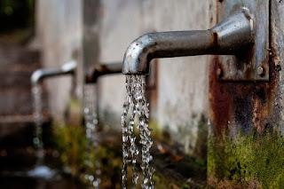 Hygieneschulung & Personalschulung: Raw Water: Teurer Trink-Trend mit Folgen