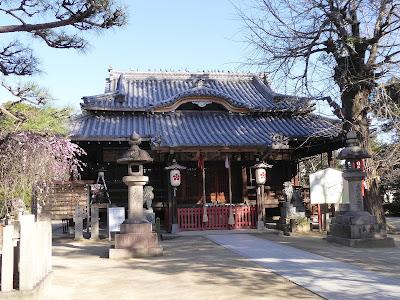佐太天神宮 拝殿 整列する鳩