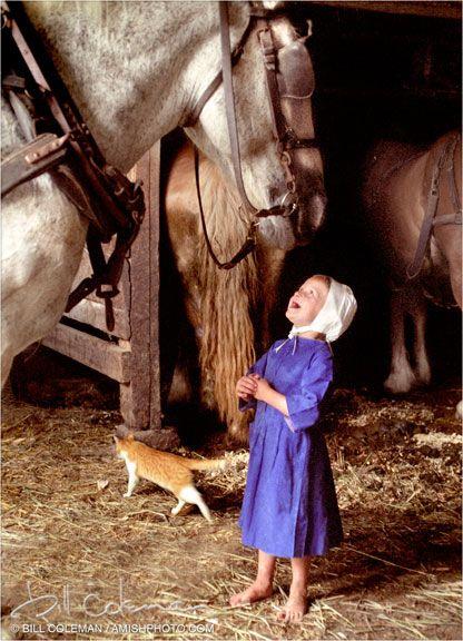 Amish datazione non Amish definire i termini relativi datazione e appuntamenti assoluti e spiegare la differenza tra i due