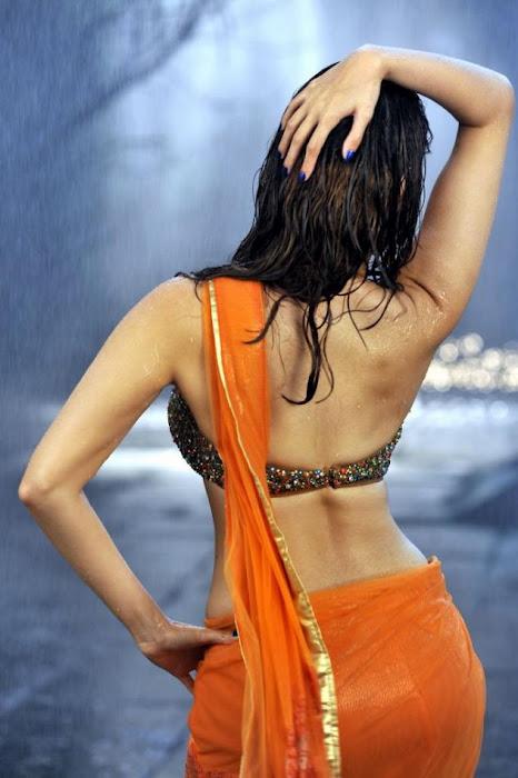 Tamanna Hot Wet Back Showing Stills