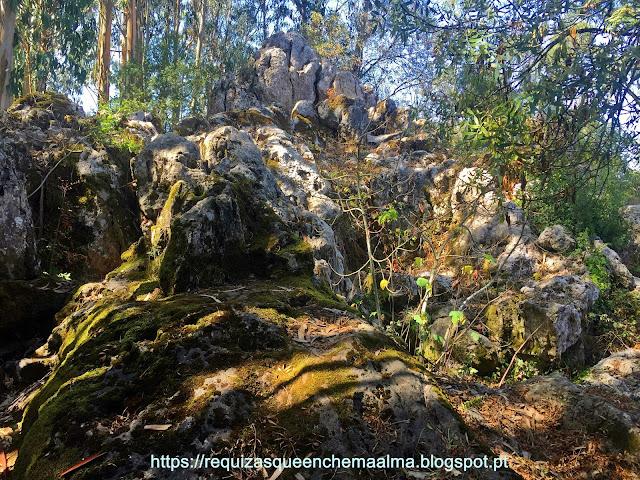 PIA DO URSO, Eco-Parque Sensorial