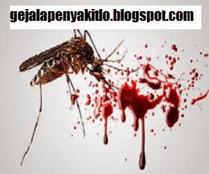 Mencegah Penyakit Demam Berdarah ~ Vivi Novitasari