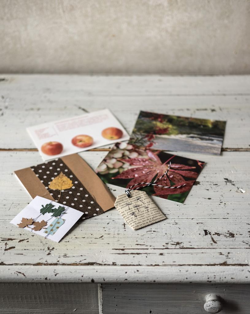 Herbstpost-Aktion von niwibo by fim.works Lifestyle Blog