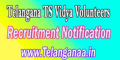 Telangana TS Vidya Volunteers Posts Recruitment Notification 2016 Online Apply